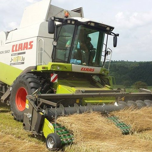 Grass seed harvest